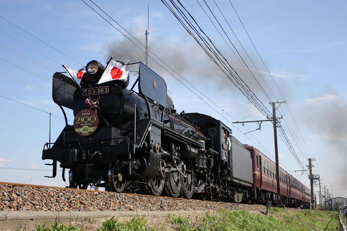 都心から最も近い蒸気機関車 秩父鉄道「パレオエクスプレス」