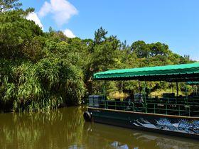 沖縄「ビオスの丘」亜熱帯の自然豊かな森で思いっきり遊ぼう!