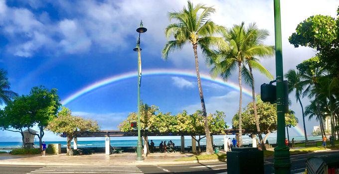運が良ければ、綺麗な虹の写真が撮れるかも!