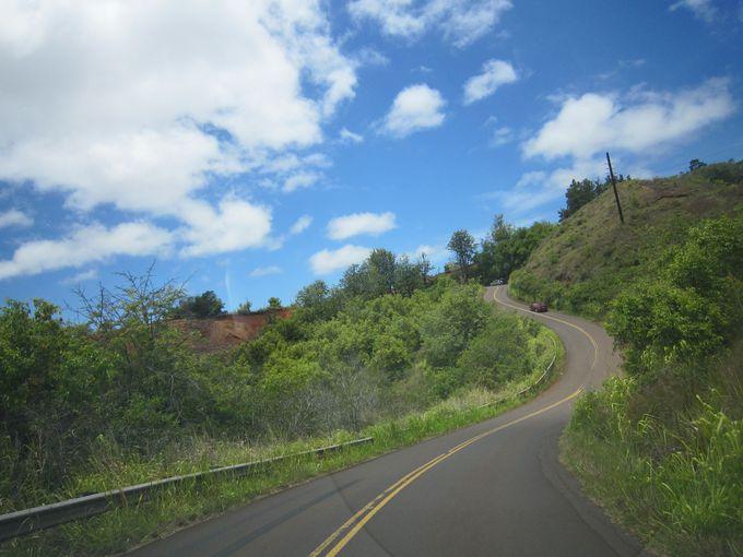 ワイメア渓谷までの道のりも絶景!