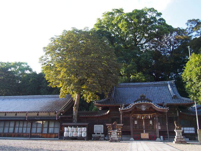 尾鷲のパワースポット 尾鷲神社