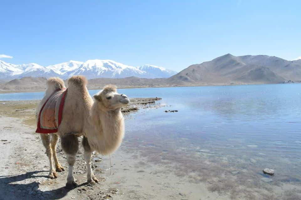 パミール高原にあるカラクリ湖が絶景すぎる!