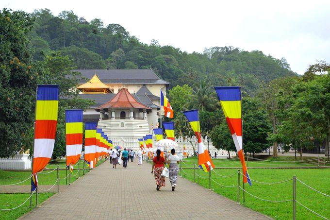 4.仏歯寺(キャンディー)