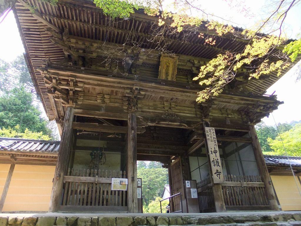 「三尾」の起点となる高雄山神護寺。平安時代より伝わる多くの旧跡、寺宝と接する。