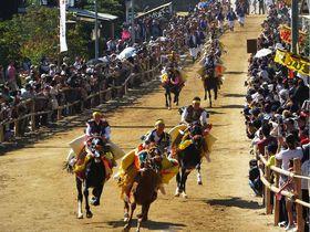 600年以上続く秋の大祭!今治・菊間「お供馬の走り込み」神事