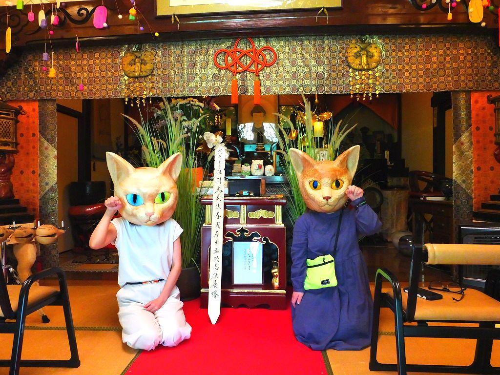ネコ好き必見!長州・萩にある猫まみれの山寺「雲林寺」