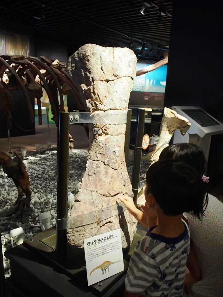 入ってびっくり!実物大のアロサウルスがお出迎え