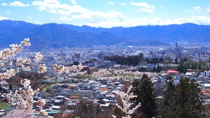 信州の絶景と桜が見渡せる穴場スポット