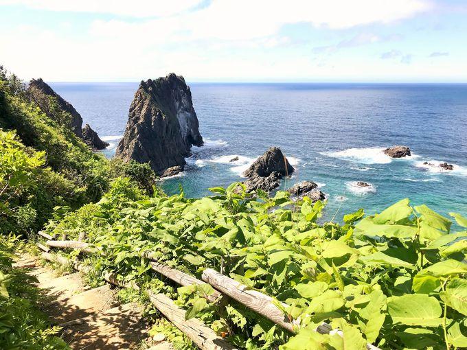 ウニを食べたら岬の先までお散歩へ!