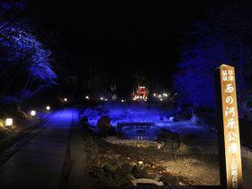デートにおすすめ!草津温泉「西の河原公園」魅惑のライトアップと足湯