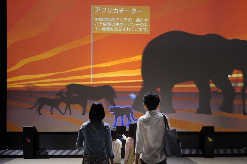 世界最大のトカゲに襲われ、ヌーの大群に囲まれる?「Orbi(オービィ)横浜」で大自然を体感できる堪能!!