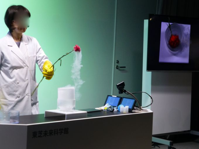 科学の不思議を学ぶ