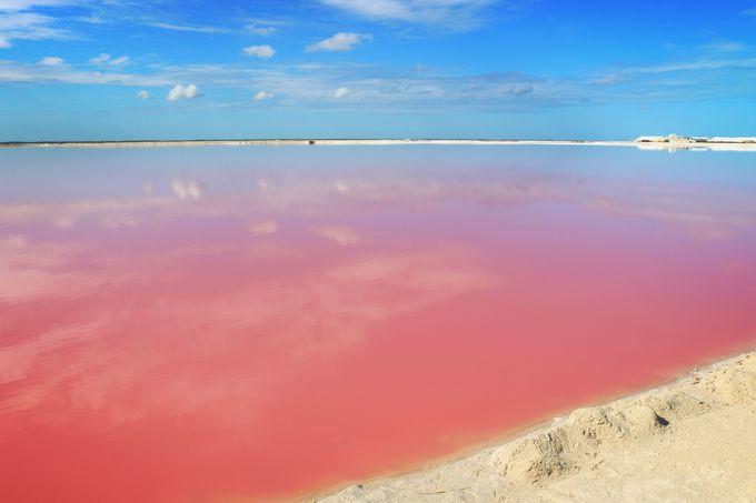 白い砂!青い空!ピンクの湖!