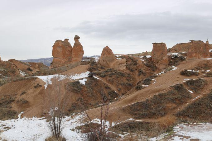 5.ラクダ岩