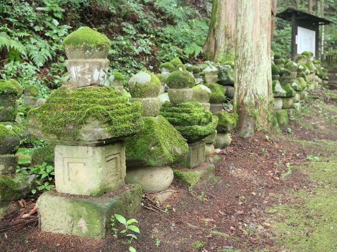 常楽寺のかわいらしい石造多宝塔を見に行こう!