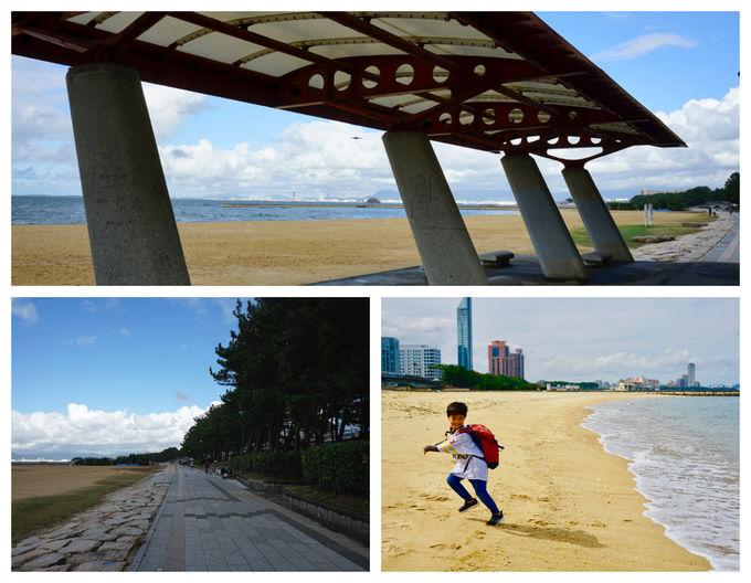 ホテルの目の前は海! 子連れでの砂遊びや散歩に絶好のロケーション