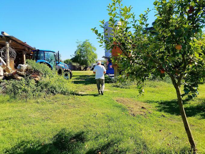 農業と観光を一度に体験「アグリツーリズモ」で過ごす旅