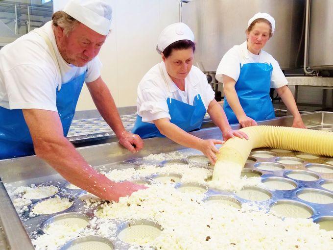 ペコリーノチーズは全40種類、全て職人による手作業
