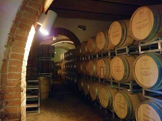 マレンマの象徴ワイン、サッフレディとモレッリーノ・ディ・スカンサーノ