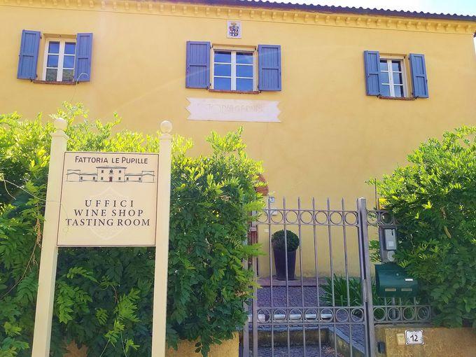 イタリアワイン界で注目のマレンマ「レ・プピッレ」ワイナリーへ