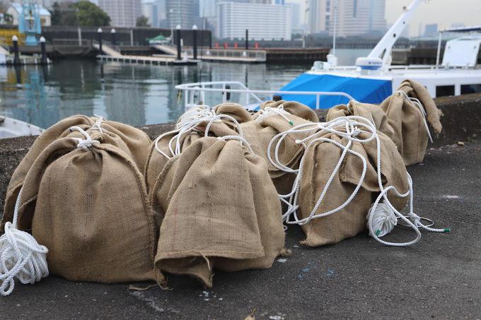 東京海洋大学とつくる海中熟成ワイン!まろやか飲み口に