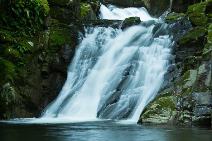 この地を護る白い蛇の伝説「霊蛇滝」