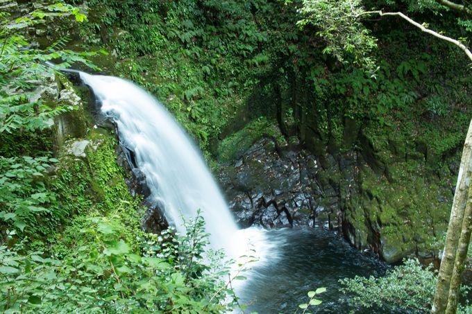 不動明王の力宿る「不動滝」