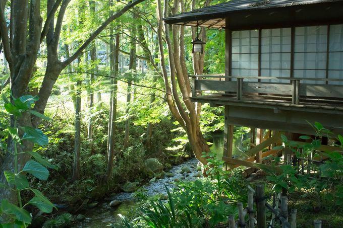 静かな自然の空気をこころゆくまで楽しめる離れ宿