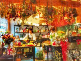 ソウルの注目タウン「益善洞韓屋村」でレトロモダンを楽しむ!