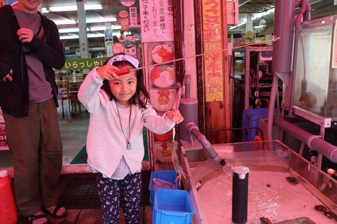楽しさいっぱい。美味しさいっぱい「函館朝市」