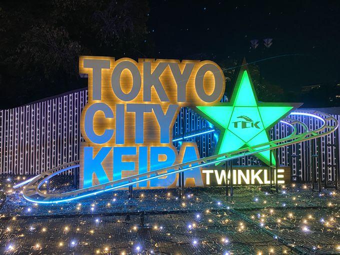 3年目を迎える「東京メガイルミ」