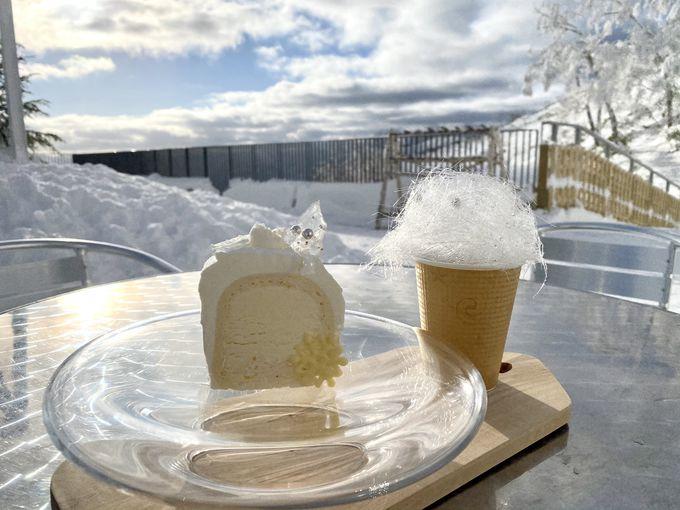 雪山の絶景!冬だけの景色「霧氷テラス」