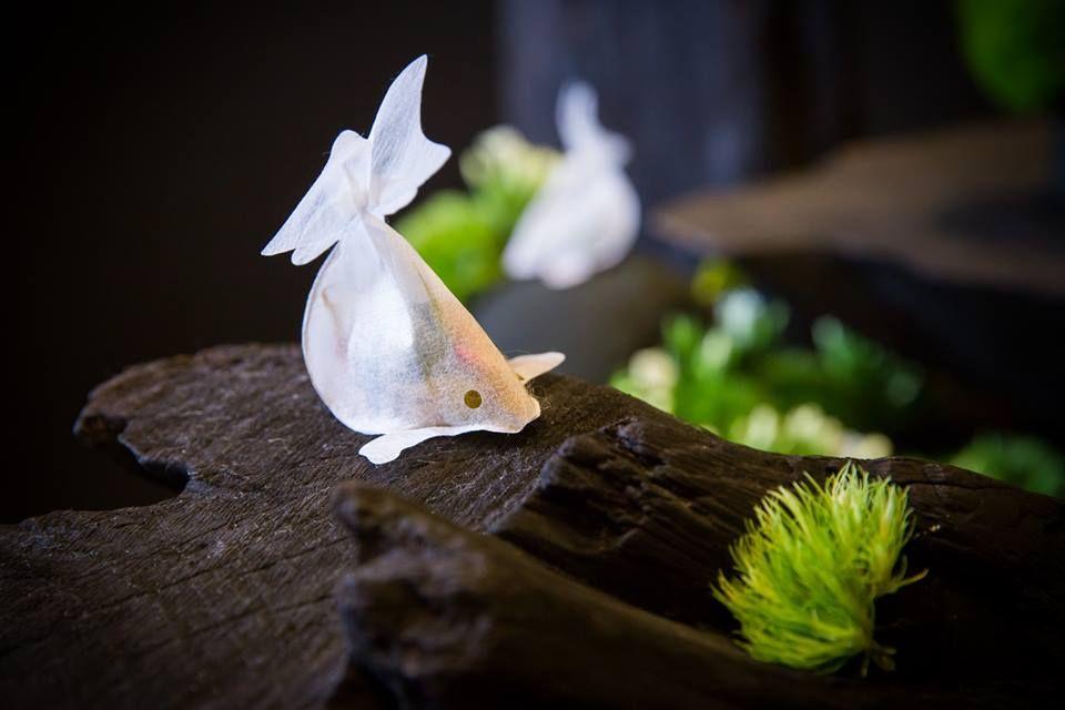 金魚ティーバックで人気「子村莊園 CHARM VILLA」台北・中山にオープン!