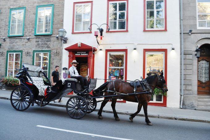 ケベックシティー観光を更に楽しむ知っ得ポイント!