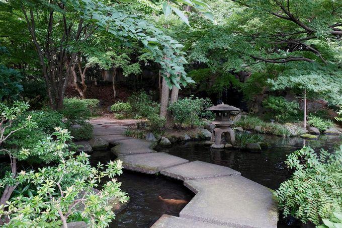 開放感が最高!緑に囲まれた天然温泉でほっこり