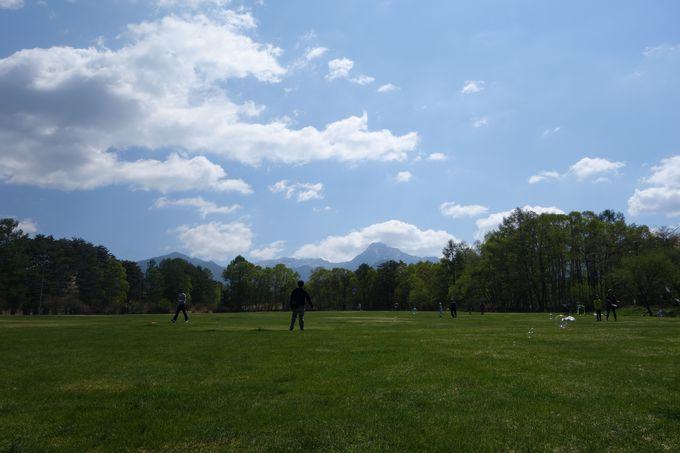 広大な芝生広場で何して過ごす?