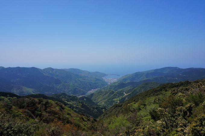 美しい山脈を眺めながら達磨山へ!