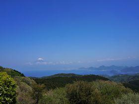 富士山を眺めながら金冠山と達磨山をハイキング