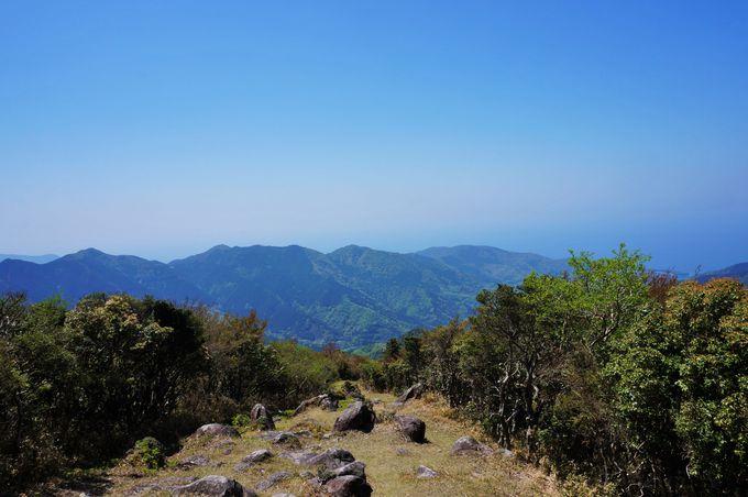 金冠山を目指してハイキング開始!