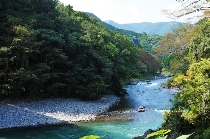 エメラルドグリーンに透き通る多摩川