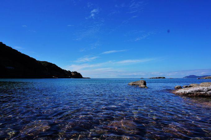 棚田だけでなく、遠くに広がる海も絶景!