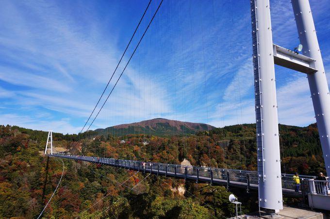 標高777mからの絶景「九重夢大吊橋」
