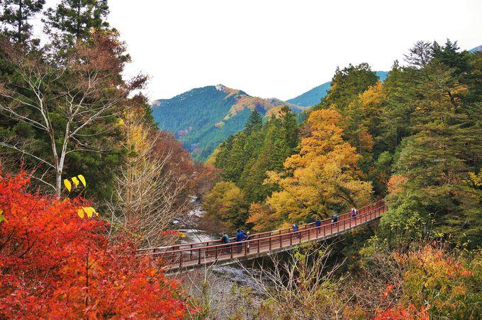 石舟橋から眺める渓谷美