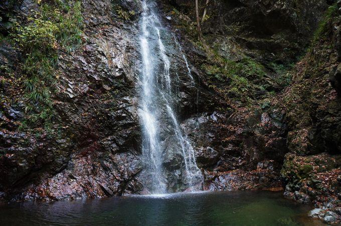 東京の秘境でリフレッシュ!日帰りで楽しむ秋川渓谷&払沢の滝