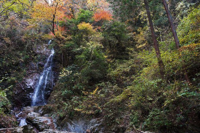 日本の滝百選に選ばれた名瀑「払沢の滝」