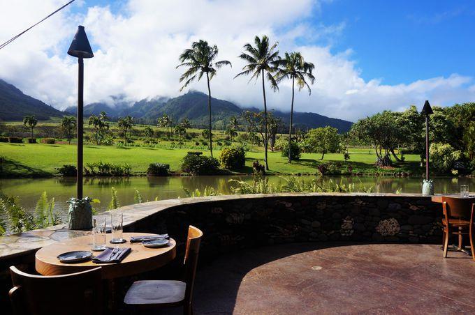 ランチ:オシャレなレストランでハワイ風創作料理