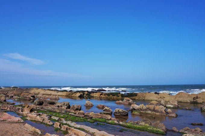 ローカル感があるのんびりビーチ「ラ・パロマ」
