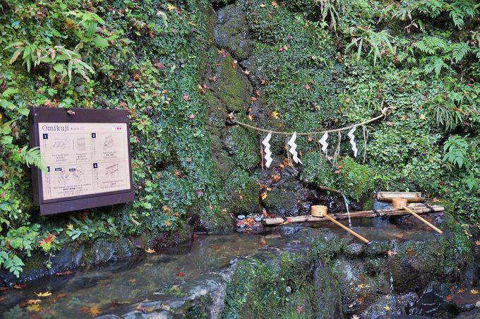水の上で文字が浮かび上がる!?「貴船神社」の水占みくじ