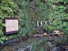 カラフルなお寺や珍しい水占いも!ひと味違う京都のお寺と神社4選