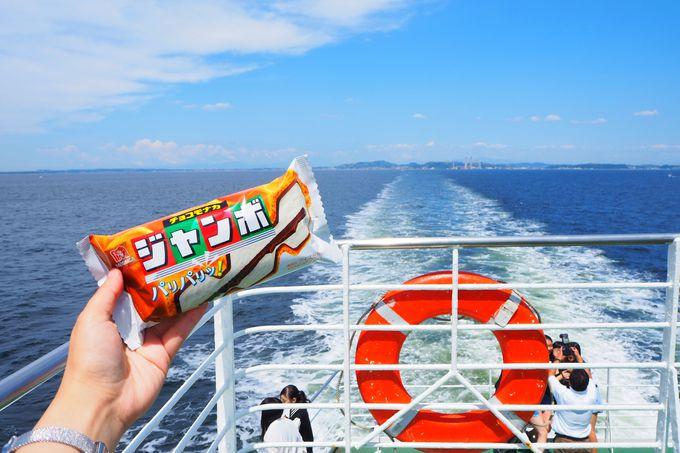 神奈川県久里浜港から対岸の千葉県金谷港までは約40分